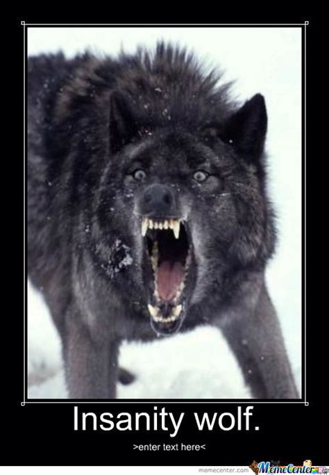 Rage Wolf Meme - insanity wolf by recyclebin meme center