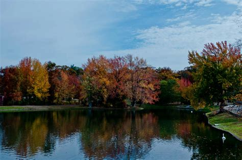 fall foliage  england