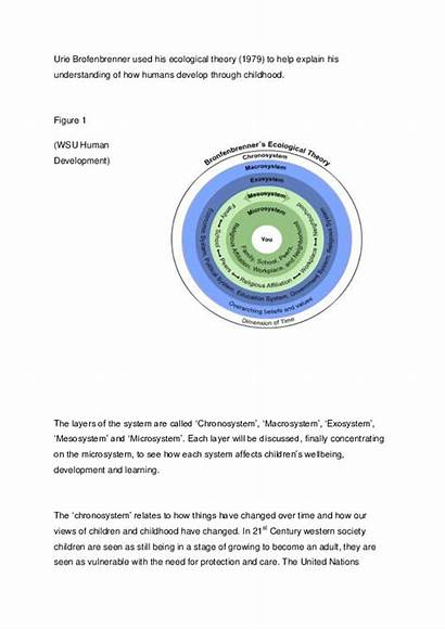 Sociology Brofenbrenner Assignment Childhood Studies Early Academia