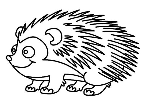 drawing hedgehog coloring pages drawing hedgehog coloring