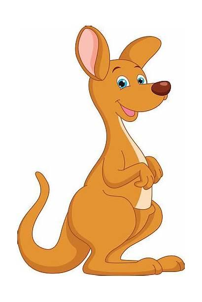 Kangaroo Cartoon Illustration Vector Clip Illustrations Royalty