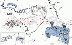 Ferrari F12 Berlinetta Fuel Tank  Fuel System Pumps And