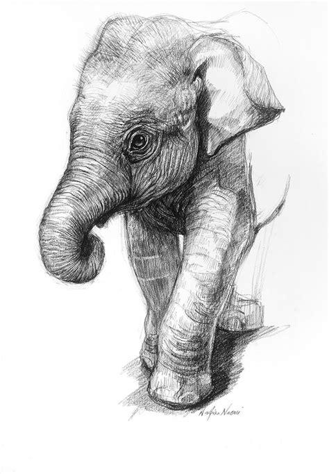 ideas  pencil drawings  pinterest pencil