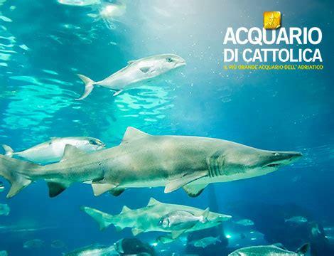 test d ingresso cattolica acquario di cattolica sconti 2019 biglietti ingresso