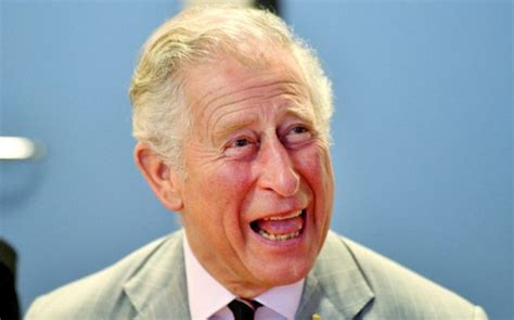 Actual Prince Charles Is Gonna Make A Royal Cameo On ...