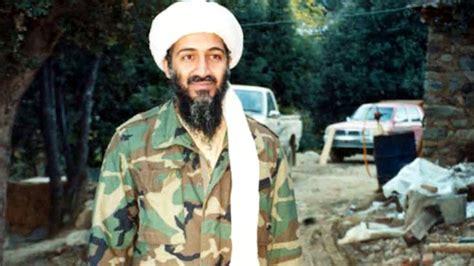 osama bin laden felt  occupation  iraq  positive