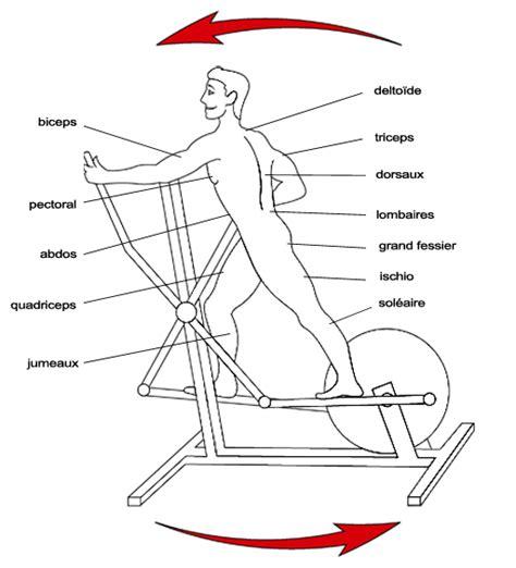 bienfait velo elliptique muscu maison