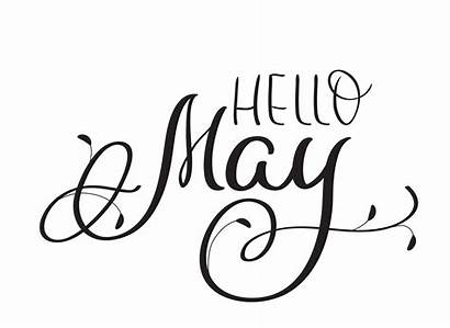 Calligraphy Hello Text Lettering Background Hand Vector