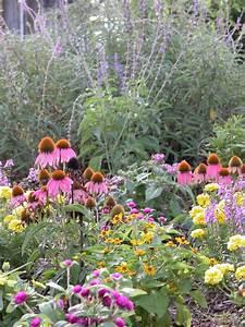 Mosi outside start butterfly gardening for Mosi butterfly garden