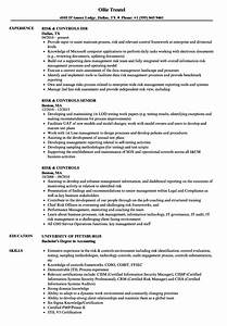 Risk  U0026 Controls Resume Samples