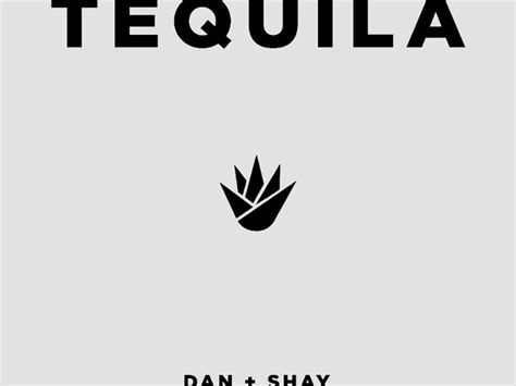 """Dan + Shay Take """"tequila"""" To Country Radio"""