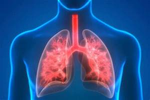 New Clues Discovered To Lung Transplant Rejection