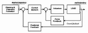 Typical Block Diagram Of Feedback Control  Sensory