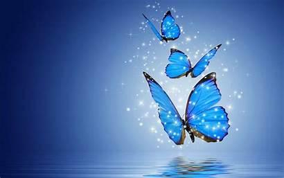 Butterfly Desktop Screen Resolution Phone
