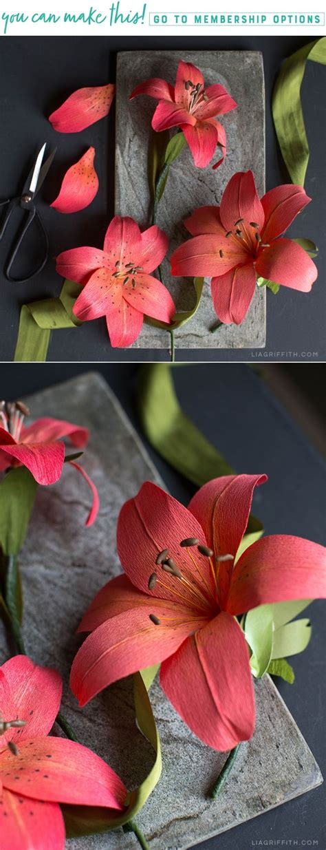 stunning crepe paper tiger lily beautiful