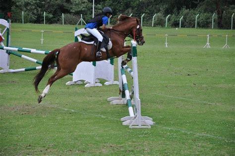 horse riding bangalore karnataka schools