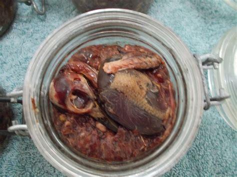 cuisine en cagne recette pate cagne en bocaux 28 images terrine de