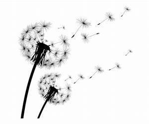 Pusteblume Schwarz Weiß Vögel : die besten 25 wandtattoo pusteblume ideen auf pinterest l wenzahn wandtattoo wandtattoo ~ Orissabook.com Haus und Dekorationen