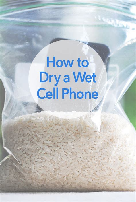 how do i leave my iphone in rice how to a cell phone she wears many hats