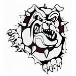 Bulldogs Woodridge Football Softball Varsity Basketball Team