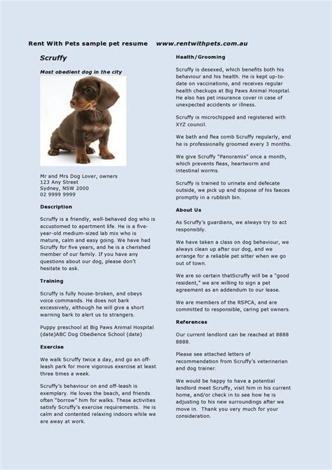 rent with pets pet resume the travel pet sitter