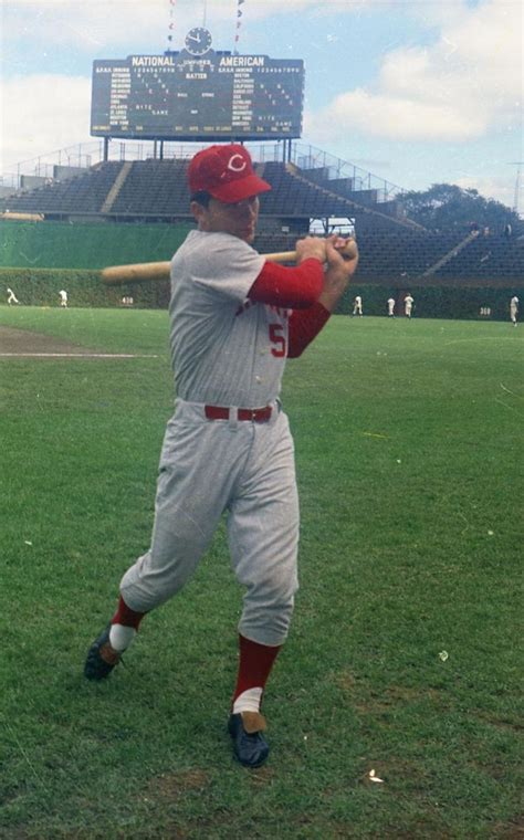 Johnny Bench Cincinnati Reds by 102 Best Images About Johnny Bench On Buffalo