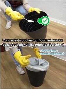 Comment Chasser Les Mouches : l 39 astuce pour ne plus avoir de mouches qui tournent autour ~ Melissatoandfro.com Idées de Décoration