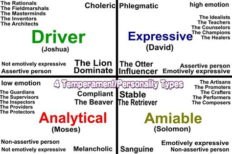 temperament personality types     knowing