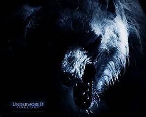 Wolf predator vs Underworld Lycans. - Battles - Comic Vine