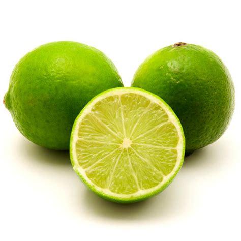 indoor citrus tree lime tahiti lime citrus latifolia my garden