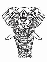 Coloring Elephant Pages Adults Adult Zen sketch template
