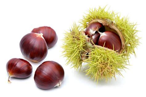 comment cuisiner les marrons comment décortiquer facilement les châtaignes et marrons