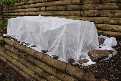how to protect your outdoor plants this winter garden