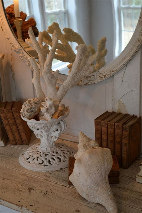 decorating  sea corals  stylish ideas digsdigs