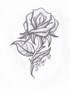 Cool Pics To Draw   rose pencil drawing by skytiger ...