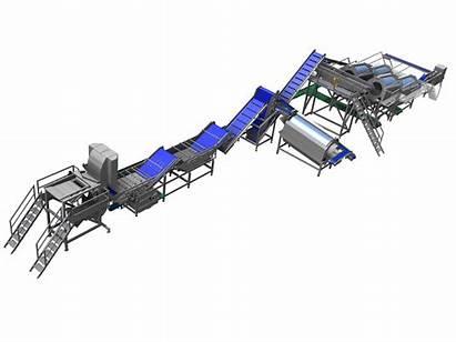 Processing Line Bean Equipment Function Pollak Vegetable