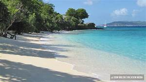 st john usvi beaches With honeymoon beach st john