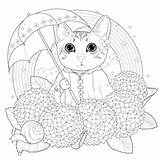 Coloring Mandala Rainbow Cats Kitty Adults Exquisite Adorable Adult Kchung sketch template