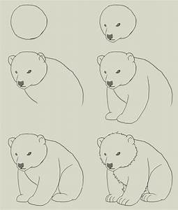 """Search Results for """"Grizzly Bears Easy Step By Step ..."""