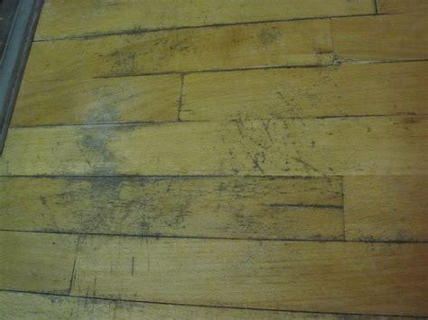 ways  remove black mold  wood  basic woodworking