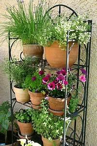 Kräuter Pflanzen Topf : mischkultur im garten und auf dem balkon tinto bloggt ~ Lizthompson.info Haus und Dekorationen