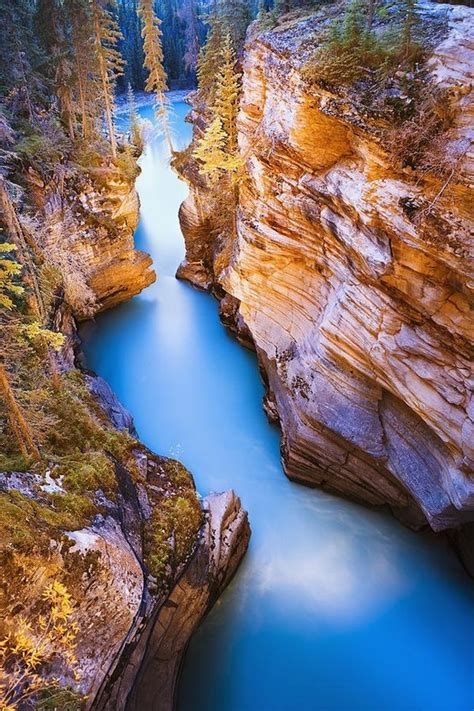 Places For Traveling Athabasca Falls At Dusk Jasper