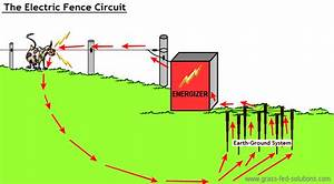 Electric Shock Wire Diagram