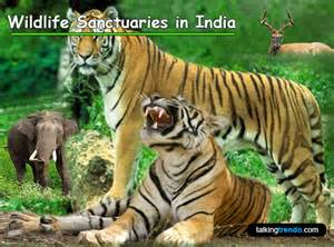 National Park and Wildlife Sanctuary in India