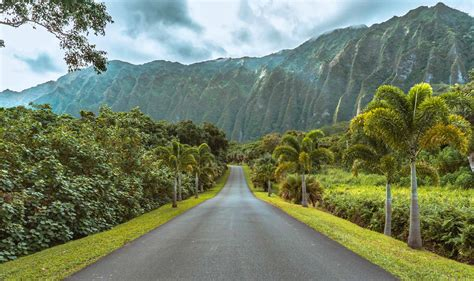 botanical gardens oahu why you need to visit the hoomaluhia botanical gardens oahu