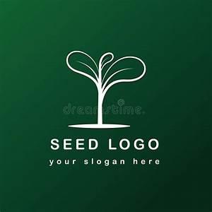 Simple Oak Seed Icon Design  Abstract Acorn Logo  Line Art