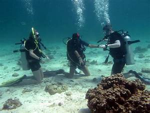 Padi Open Water Diver Course In Small Groups On Koh Lanta