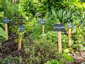Kräuter Im Garten : welche kr uter passen zusammen und welche nicht garten blog ~ Frokenaadalensverden.com Haus und Dekorationen