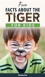 Chinese Gender Chart 2016 Due Date 87 Interesting And Fun Tiger Facts For Kids