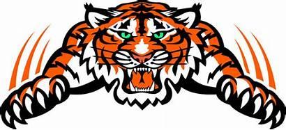 Tiger Mascot Clipart Football Clemson Fenton Decal